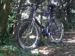 1994 Specialized Rockhopper